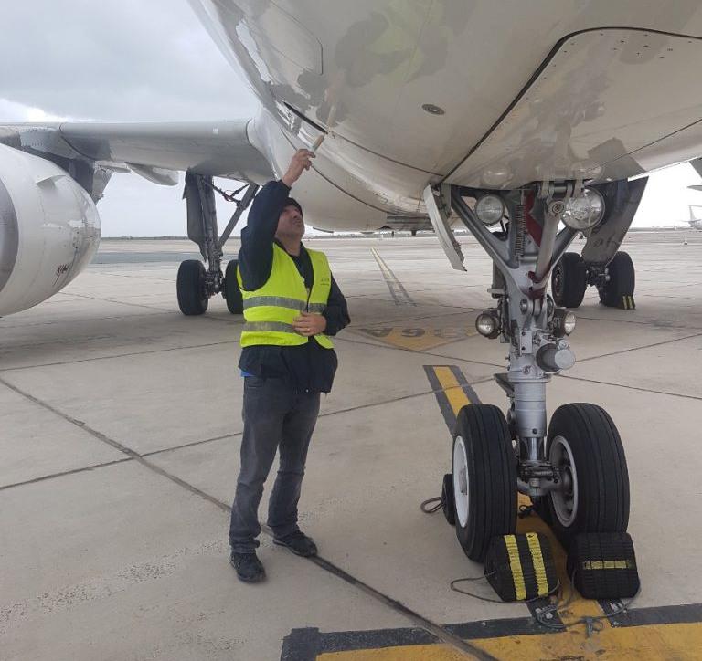 Airplane Pest Control Cyprus