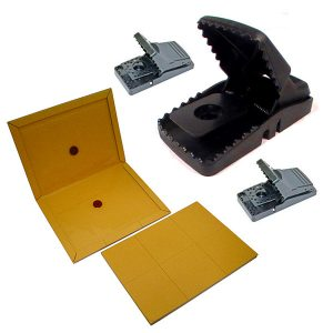 Snap and Glue Traps